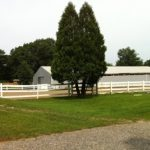 Zephyr Farm