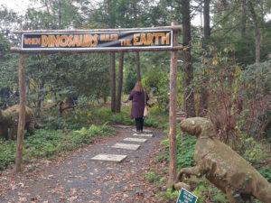 Lasdon Park and Arboretum - Fall Festival