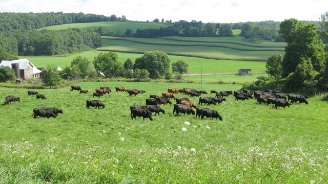 FarmEats
