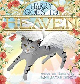 Harry Goes To Heaven, children's book