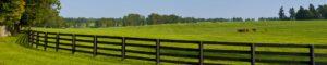 Then Again Farm