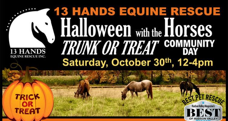 Halloween with the Horses Trunk-or-Treat