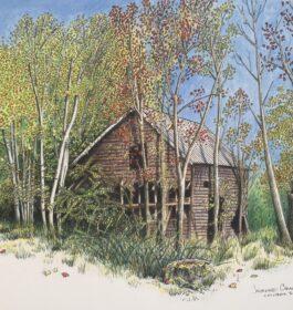 """Pine Road Barn"" Jeanne CimorelliPrint"