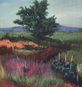"""Garden on Mohonk"" Laura Martinez-Bianco Print"
