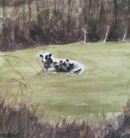 """""""Cow"""" Louise McCutcheon"""