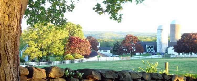 Support Farms of The Hudson Valley – Eat Local!