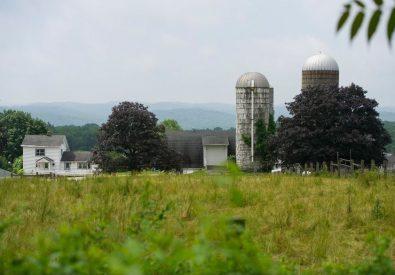 Hilltop Hanover Farm...