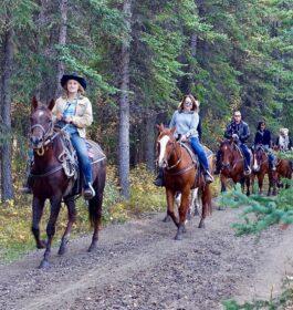 IHeart HV Horseback Riding And BBQ