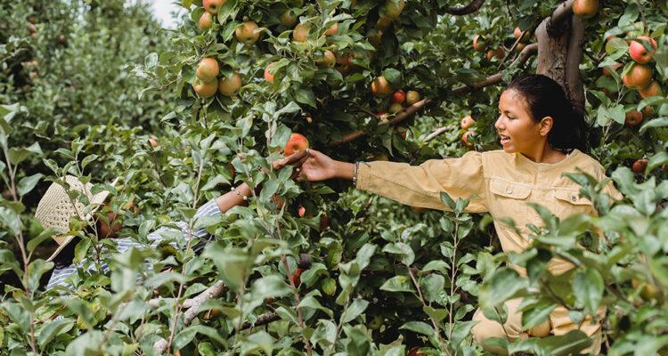 1st Annual Women in Food & Farming Festival