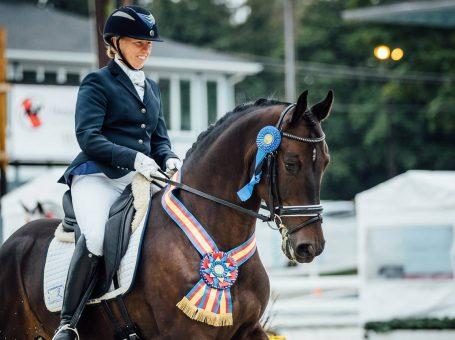Stonebridge Sport Horses