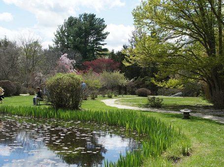 Hammond Museum & Japanese Stroll Garden